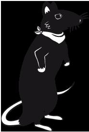 Les trois personnages de Soracha.fr - Le Rat fouineur de culture