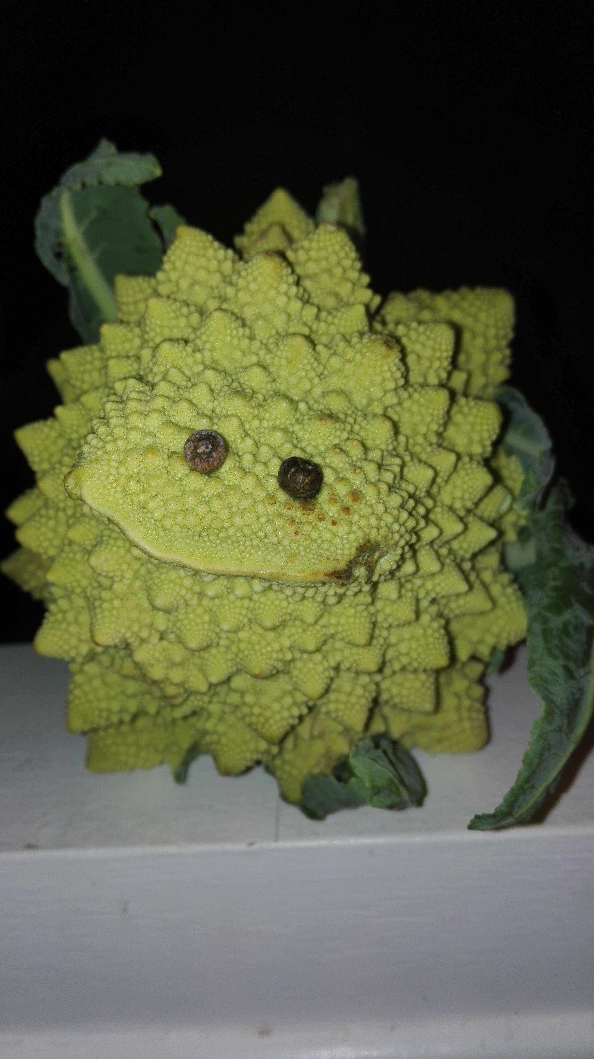 Animale fantastique sculpté dans un chou