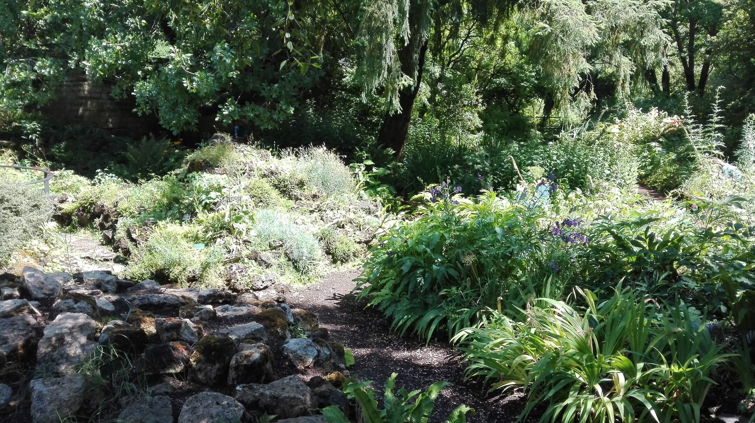 jardin-alpin