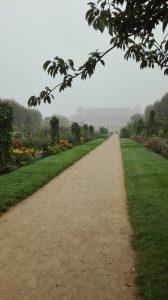 Allée_Jardin des Plantes