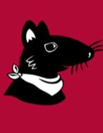 Visuel portrait Le Rat fouineur de culture