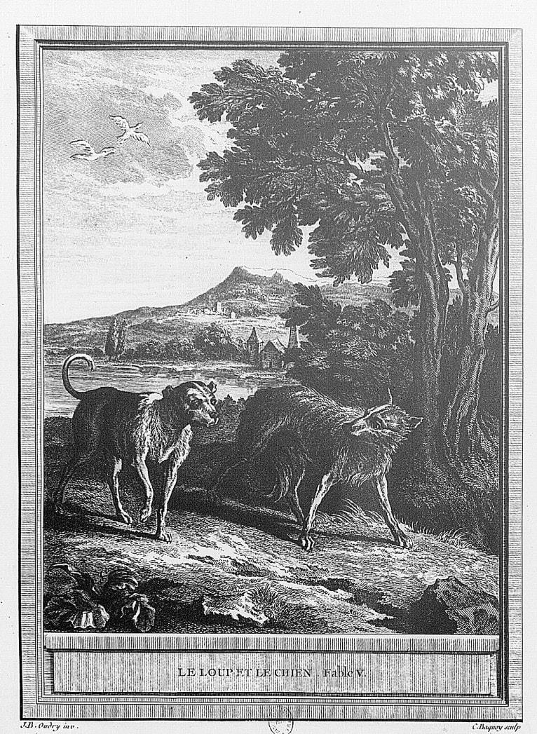 Gravure Le loup et le chien