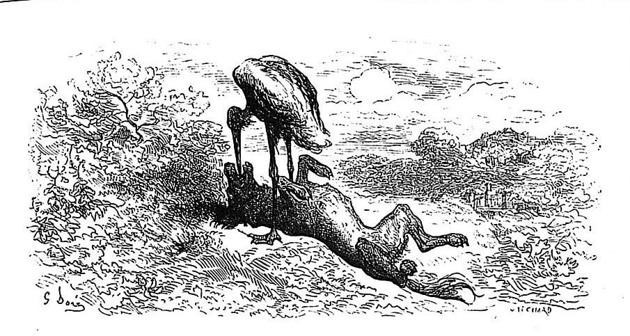 Gravure Le loup et la cigogne