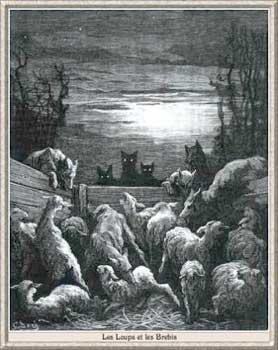Gravure le loup et les brebis