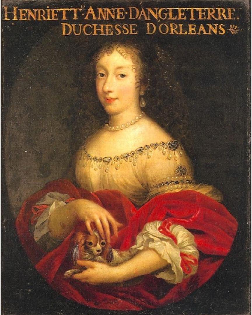 Portrait d'Henriette d'Angleterre