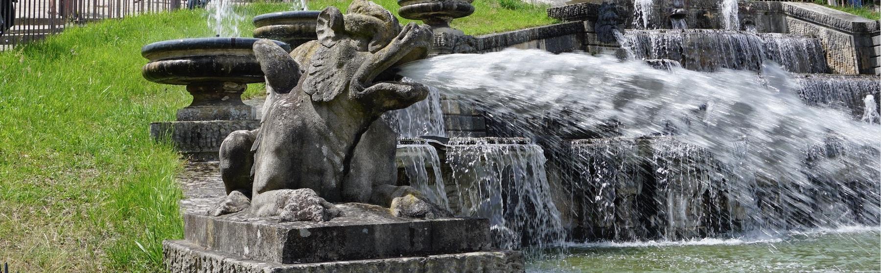 Sculpture dragon crachant de l'eau_Domaine de St cloud