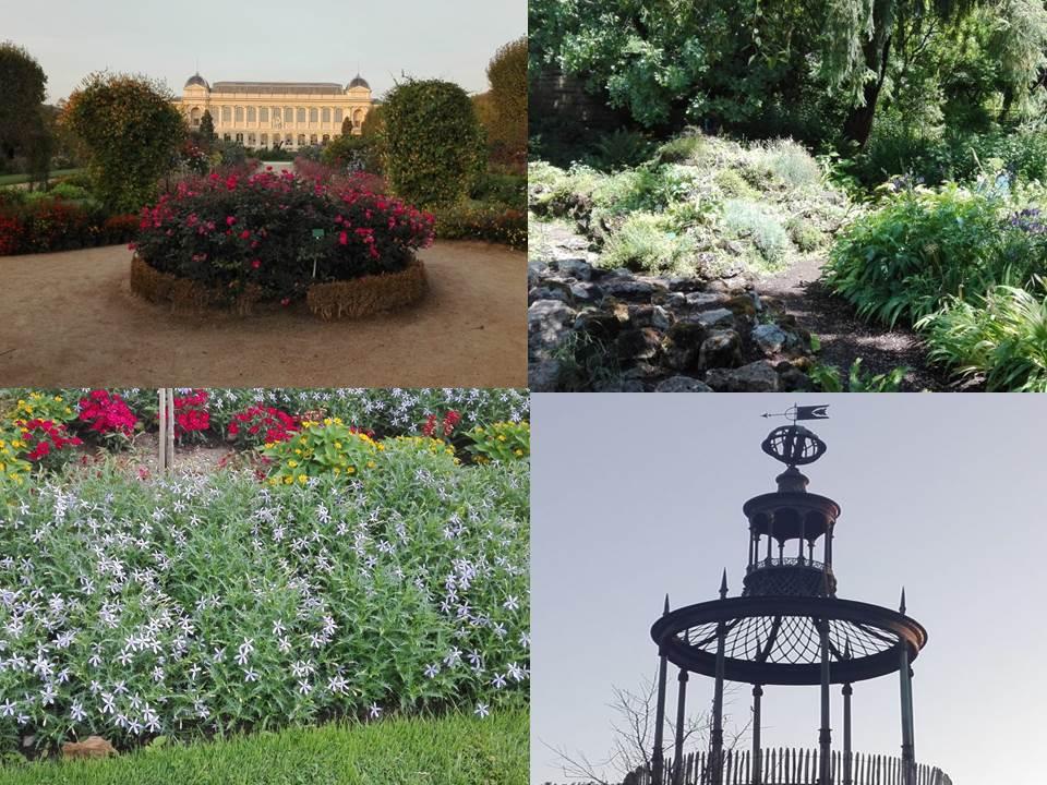 Jardin des Plantes_Soracha