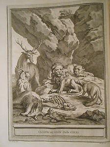 Gravure La cour du lion