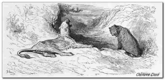 Gravure La lionne et l'ourse