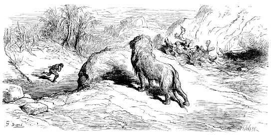 Gravure Le lion et le chasseur