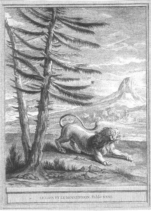 Gravure Le lion et le moucheron
