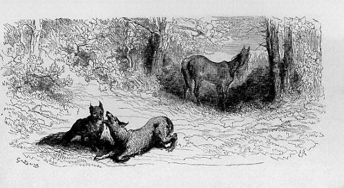 Gravure Le loup et le renard