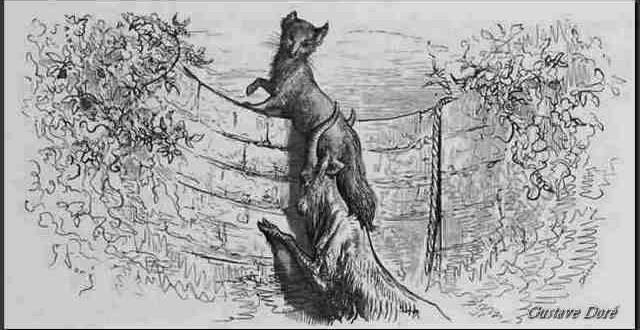 Gravure Le renard et le bouc