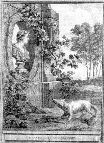 Gravure Le renard et le buste