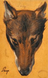 Tête de Loup Desportes