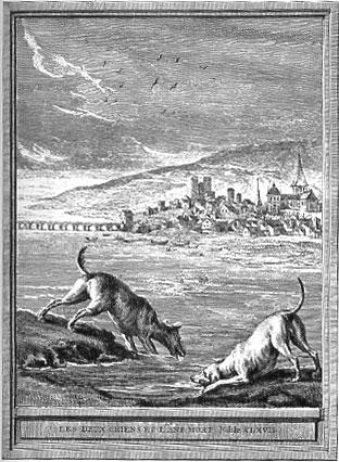 Gravure les deux chiens et l'âne mort