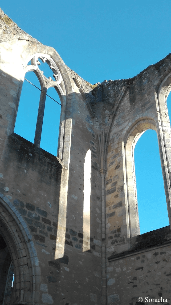 ruines de l'abbaye du Lys